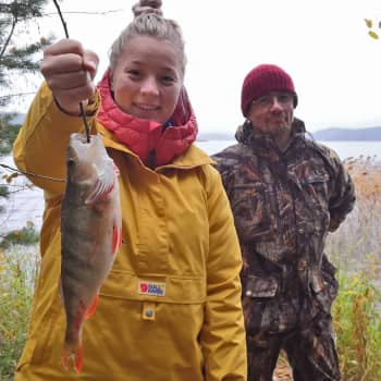 Luonto-Suomen nokikokit