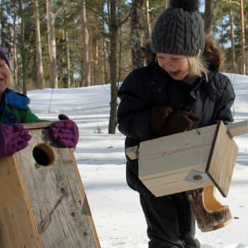 Luonto-Suomi.: Miljoona linnunpönttöä