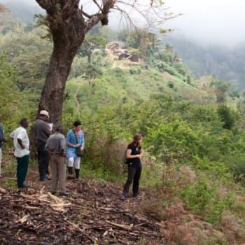 Luonto-Suomi.: Metsäkadon pysäyttäminen Tansaniassa 16.11.2011