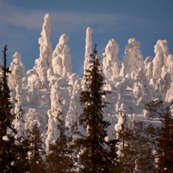 Luonto-Suomen talvi