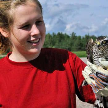 Luonto-Suomi.: Loukkaantuneiden eläinten ilta