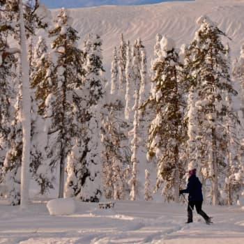 Luonto-Suomen lumi-ilta