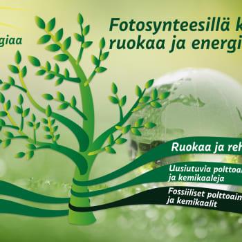 Hiilineutraali maailma – korvaavatko yhteyttämisen kautta syntyneet suorat biopolttoaineet fossiiliset polttoaineet?