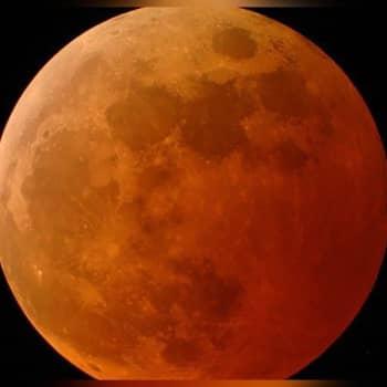Tiedeykkönen: Ensi maanantaina nähdään superkuu ja kuunpimennys