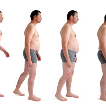 Läskikerros on aktiivinen hormonien, ruokahalun ja aineenvaihdunnan säätäjä.