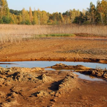 Tiedeykkönen: Vanhat kaivokset - osa uhka luonnolle, Kiskon Orijärvi