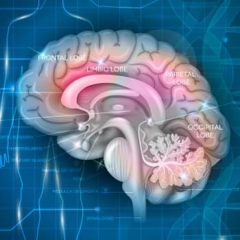 Psykiatristen sairauksien riskigeenit altistavat, mutta eivät määrää ketään sairastumaan