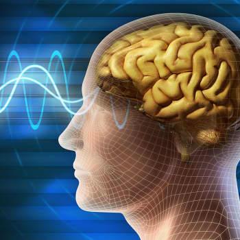 Mistä aivot tykkää ja mistä ei?