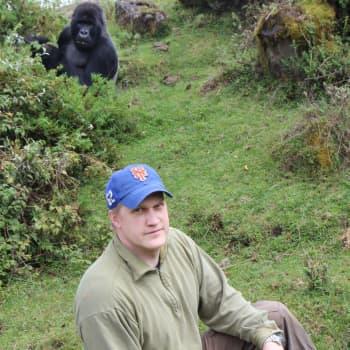 Oulun yliopiston gorillatutkija jäljittää luukadon alkuperää – Afrikan viidakossa apinoiden tarkkailua turvaa vartija