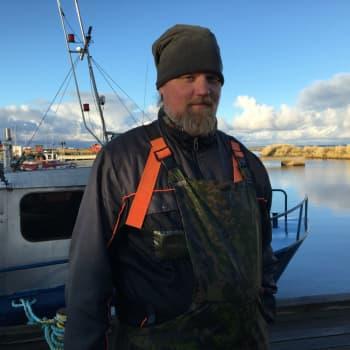 Kalastajan karu aamu Hailuodossa: saaliina kaksi hyljettä ja kalan paloja