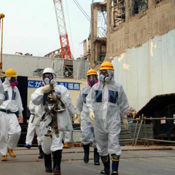 Saneringen av Fukushima / Vad hände med försiktighetsprincipen?