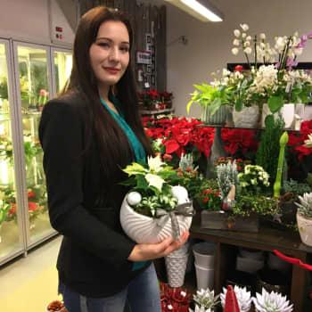 Mistä vuoden nuori floristi saa ideansa joulun kukka-asetelmiin?
