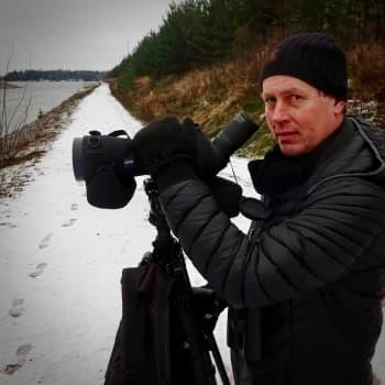 Montako lintulajia Helsingissä on mahdollista nähdä vuoden aikana?