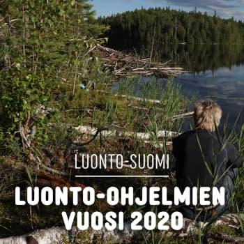 Luonto-ohjelmien vuosi 2020