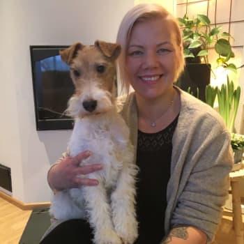"""Mari Hänninen kouluttaa koirastaan kuuloapulaista: """"Irma raapaisee tassulla, kun herätyskello soi"""""""