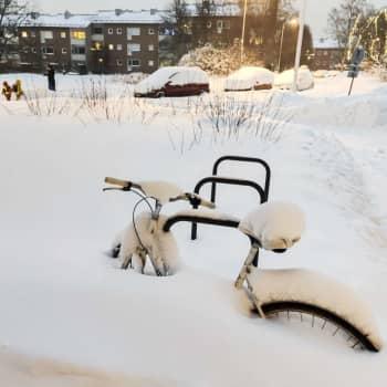 Meteorologin povaukset loppuviikon lumisateista