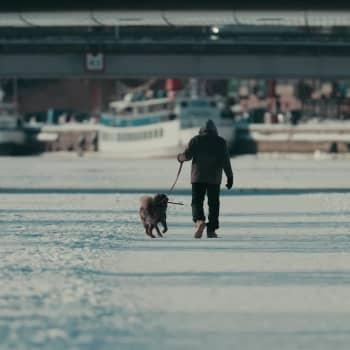Yle Åboland - video