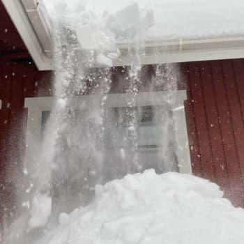 Pohjanmaalla on tänä talvena harvinaisen paljon lunta