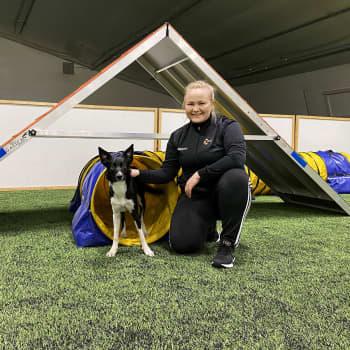 """Korona vaikuttaa koirienkin harrastustoimintaan – """"Jotkut joutuvat agilitystä eläkkeelle ennen aikojaan"""""""