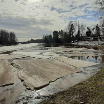 Vesien pinnat lähestyvät tulvahuippua pohjalaisjoissa
