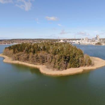 NTM-centralen kommenterar lovet till skarvjakt på ön Högen i Pargas