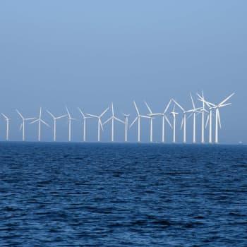 Havsvindkraftens dilemma