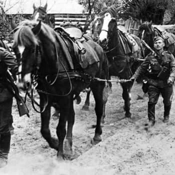 Toinen maailmansota: Kesäkuu 1941