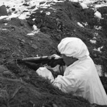 Suomineito yritettiin katkaista Suomussalmella