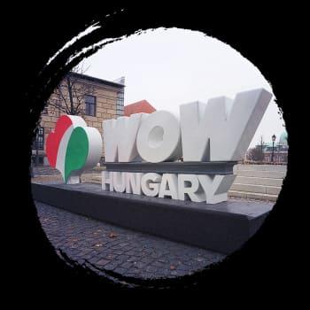 Unkarissa oikeisto-populistinen hallitus haluaa yliopistot ja median vaikutuspiiriinsä