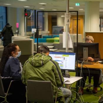 Näringslivets delegation förslår nytt arbetslöshetsstöd – 20 000 euro på konto som man sedan fyller på själv