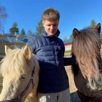 Eläimestä on apua terapiahetkellä - Hevosen vierellä tunteet heräävät ja keskustelu psykologin kanssa käy helpommin