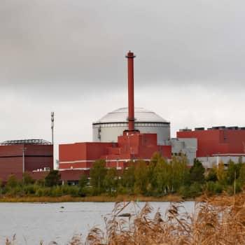 Finlands och Sveriges klimatmål och det ökade energibehovet – vilken är kärnkraftens roll nu och framtiden?
