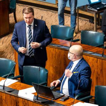 Sannfinländsk dag i riksdagen