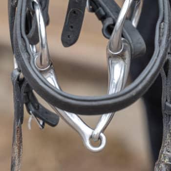 Åbo djurskyddsförening har sagt upp samarbetet med stallet i Nådendal