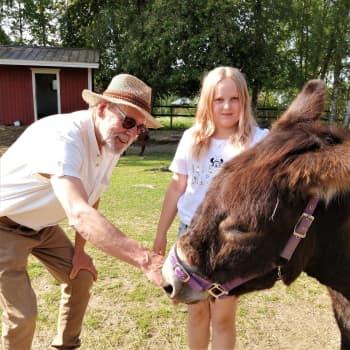 Wanha Markki Ylistarossa on toiminut eläinten vanhainkotina jo 22 vuotta