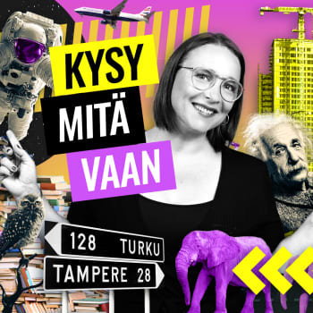 Kysy mitä vaan suomenruotsalaisuudesta:Miltä tuntuu kuulua etuoikeutettuun vähemmistöön?