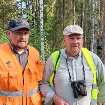 Metsää hakataan kuukkelia suojellen