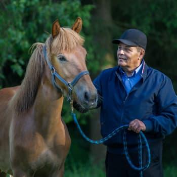 """""""Lapsen ja hevosen kasvattamisessa on paljon samaa"""", toteaa Taito Lehmusta"""