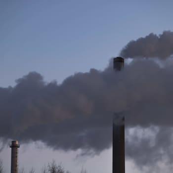 Ministerit Lintilä ja Tuppurainen arvioivat EU:n ilmastoesitystä