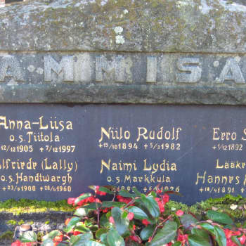 Niilo Tammisalo - suomalaisen palloilun kehittäjä