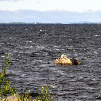 Jussa Seurujärvi virkosmittempeeivijn