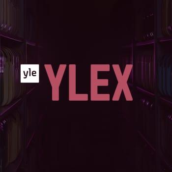 YleX Viikonlopun Mysteerisoittaja: XMIES