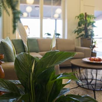 Asiantuntija: Hotellilta haetaan nyt kokemuksia, hyvinvointia, pysähtymistä ja rauhoittumista