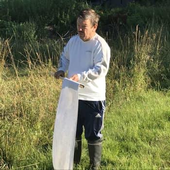 """Invånarna i Bobäck i Kyrkslätt får gratis vaccin mot TBE : """"I år har jag sett bara två fästingar"""""""