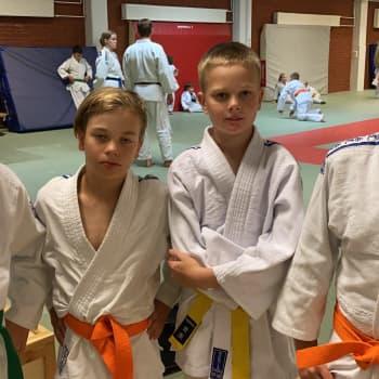 Judo on rajaton riemu - Kaveria on kiva heittää