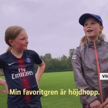 Yle Huvudstadsregionen - video