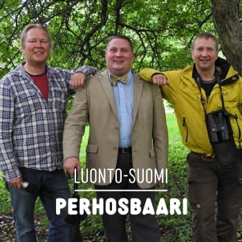 Luonto-Suomen perhosbaari