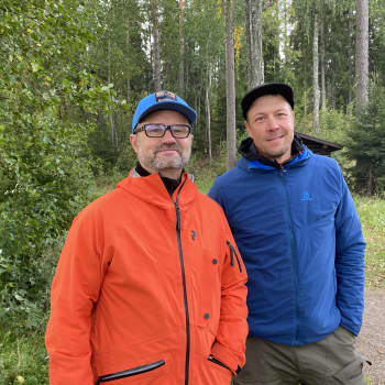 Tammelan MetsäHUB vei taas toimistotyöläiset metsään