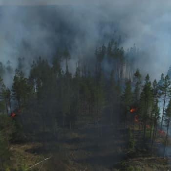 Varning för skogsbrand råder i hela landet