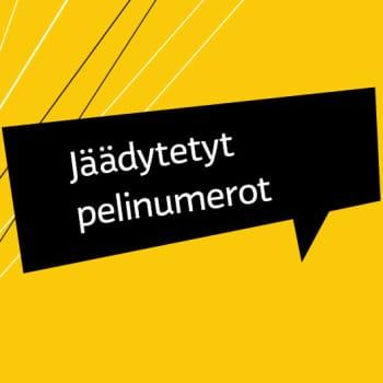 Osa 7: Risto Jalo #13, Ilves